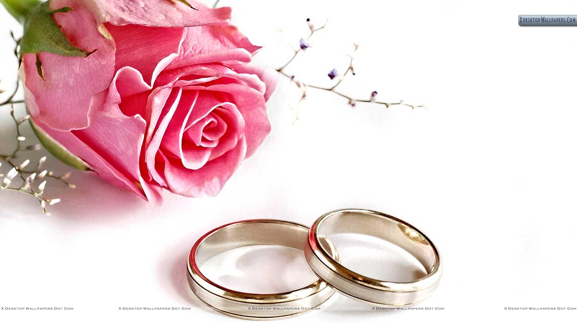 marturii nunta 2017